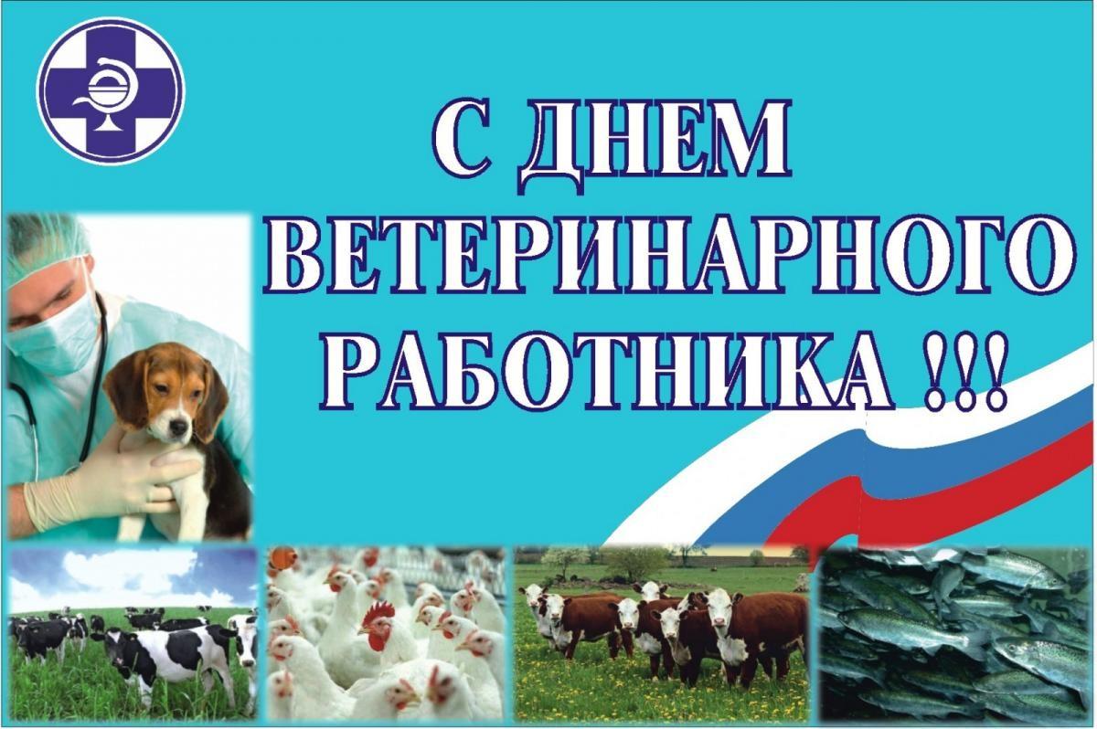 день ветеринарного работника россии летнего периода